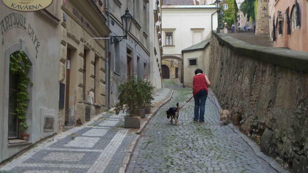 The Street of Praha